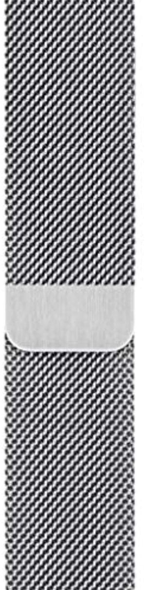Apple Watch Milanese Loop (40mm) - Silver