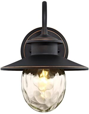 Westinghouse 6313100 Delmont One-Light Outdoor Wall Fixture with Highlights and Clear Water Glass, Oil Rubbed Bronze
