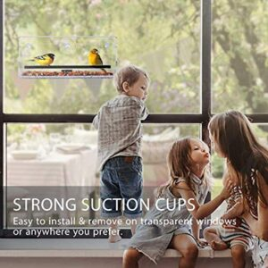VIVOHOME Acrylic Squirrel Proof Rectangle Window Bird Feeder with Strong Suction Cups and Sliding Seed Tray